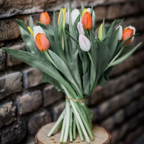 Bouquet de tulipes multicolore